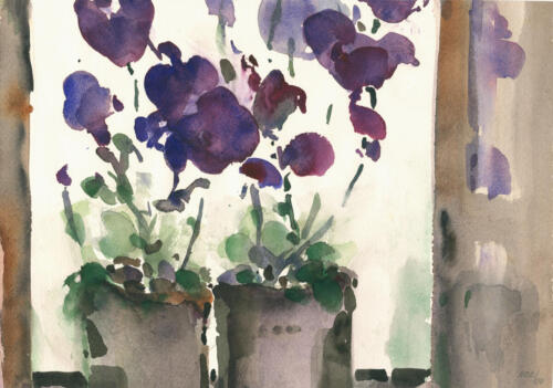 Blumen,   flowers,    kvety